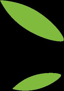 Decorazione foglie left