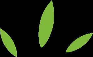 Decorazione foglie top